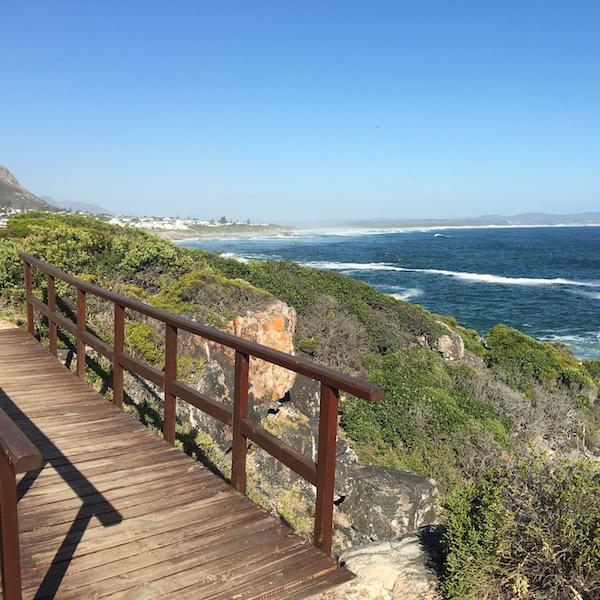 Buy property in Hermanus South Africa